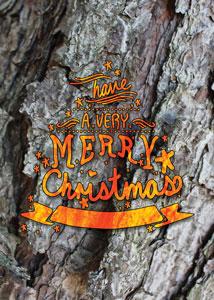 Christmas-Card-Camo_2